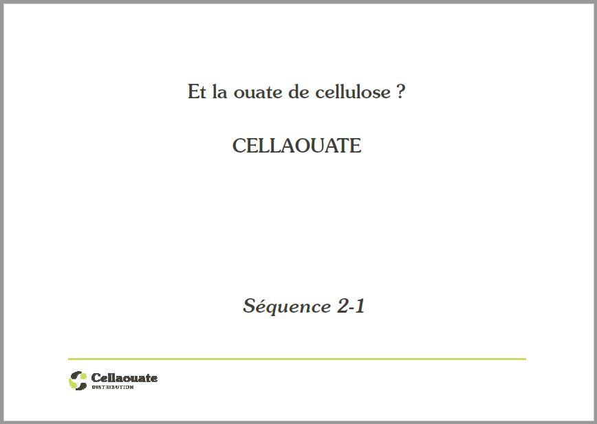 Cellaouate et l'économie sociale et solidaire